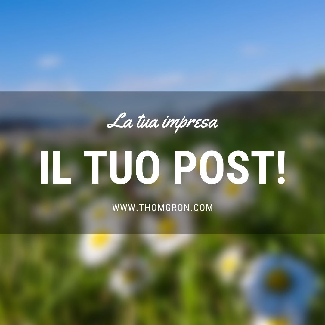 post di prova con campo di margherite